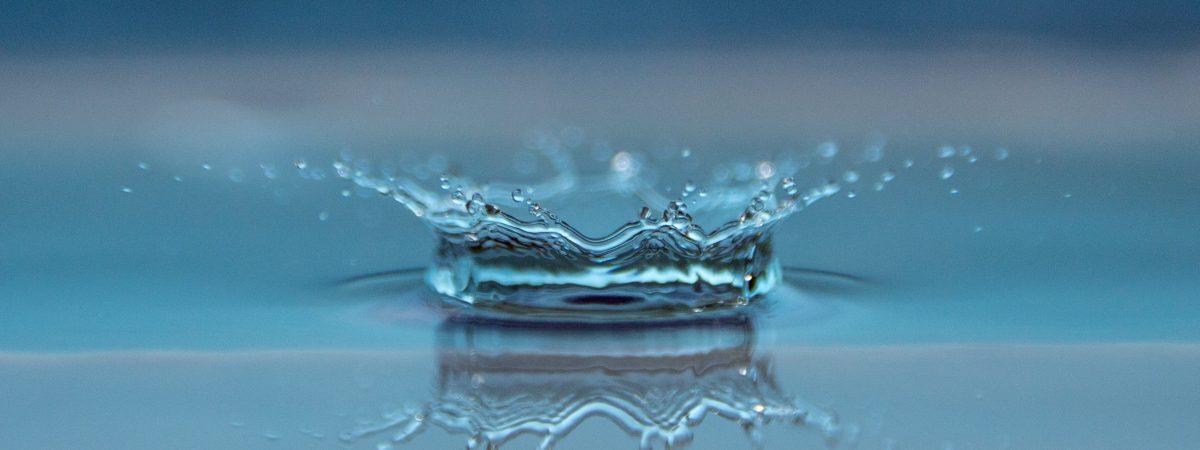 Wasser ist und bleibt das wertvollste und wichtigste Lebensmittel überhaupt…